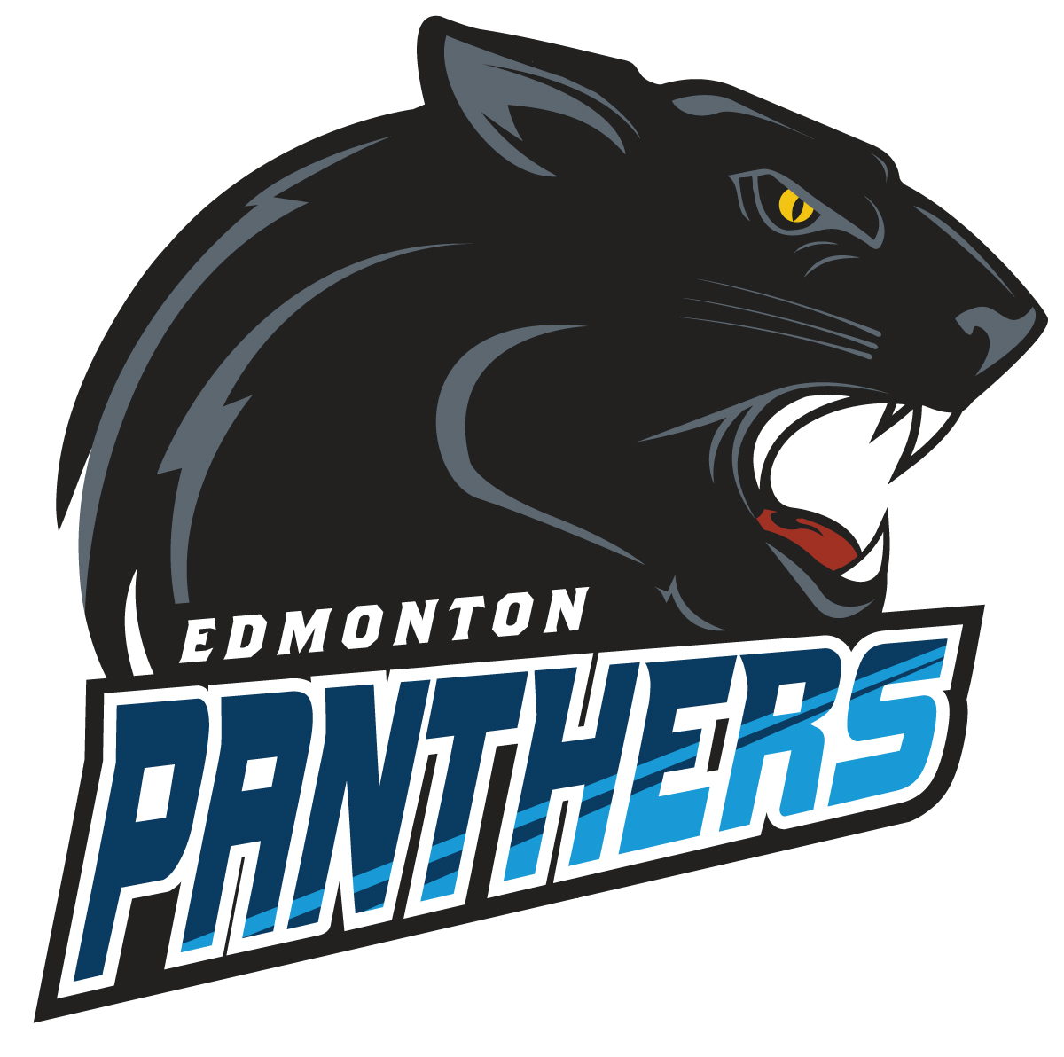 edmonton-panthers_final-front.jpg (313 KB)